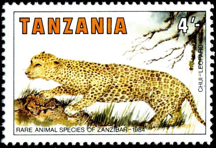 Very rare animal species