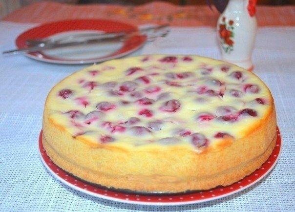 Рецепт бисквитного пирога с вишней и сметаной