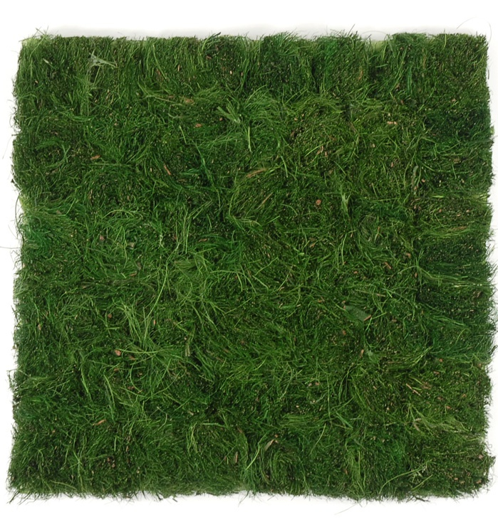 Pinterest for Mounding grass