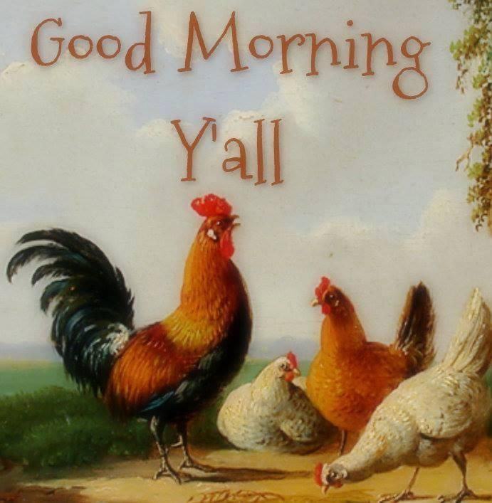 Pin by Terri Manthei on Chicken Pictures / Cute Chicken Sayings | Pin ... Good Morning Happy Monday Quotes