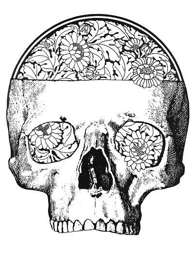 Line Art Skull : Line art skull zentangles doodles and pinterest