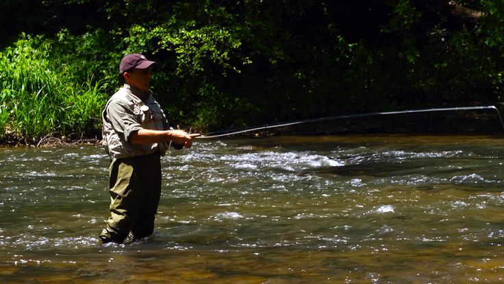 Pin by leigh montgomery on rambles pinterest for Fly fishing georgia