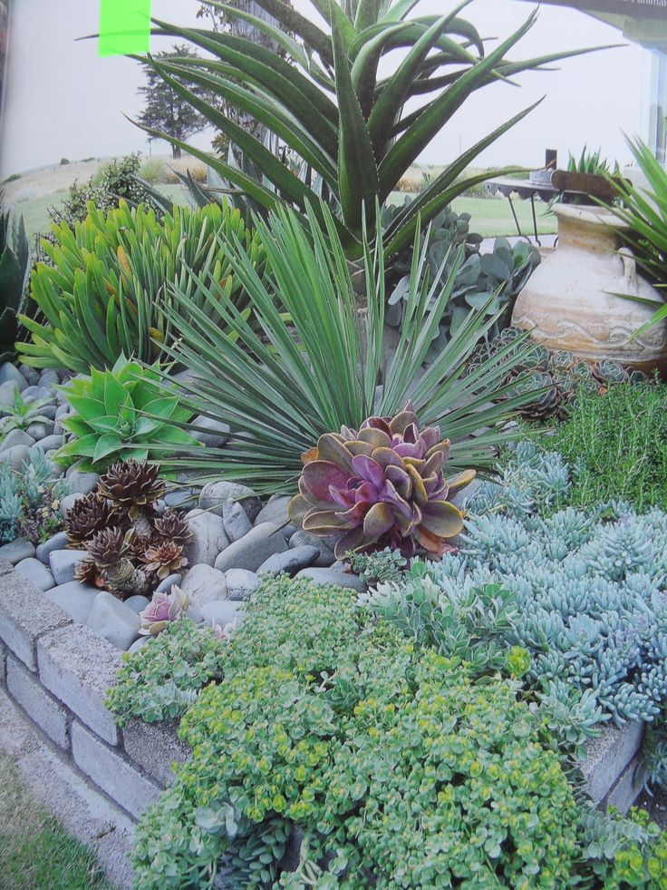 low maintenance flower bed planting ideas pinterest