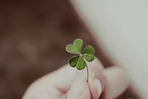 """""""O que vale na vida não é ponto de partida mas sim a caminhada...caminhando e semeando, no fim terás o que colher!..."""" (cora coralina)"""