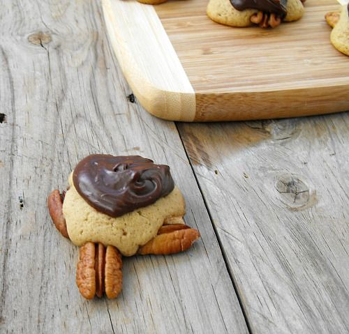 Snappy Turtle Cookies: Recipes From Long Ago | Recipe
