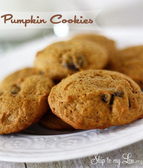 Easy Pumpkin chocolate chip cookies! www.skiptomylou.org