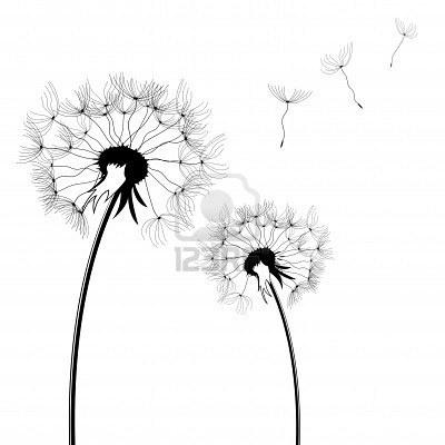 Dandelion silho... Vectorstock Media