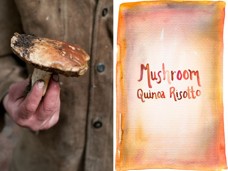 mushroom risotto red wine mushroom risotto turkey mushroom risotto ...