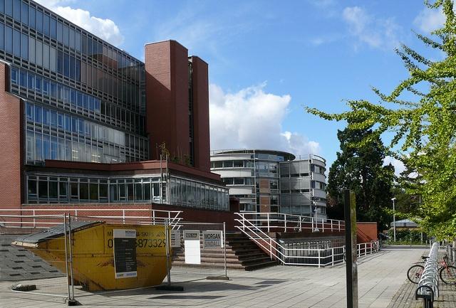 cambridge university dissertations online