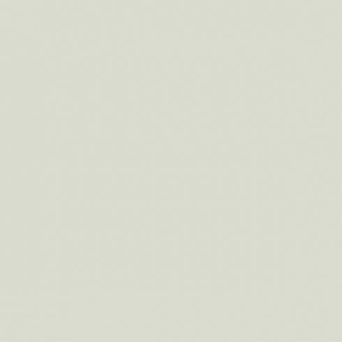 Benjamin Moore Paint Color Family