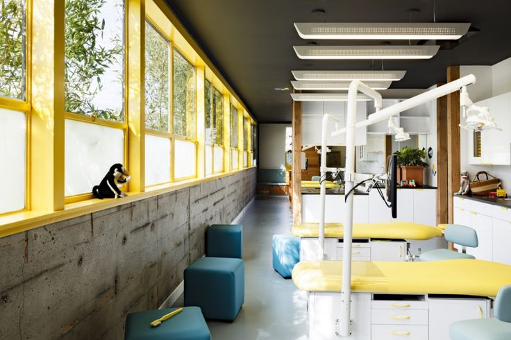 seattle kid 39 s dentist office ortho dentist office ideas pintere