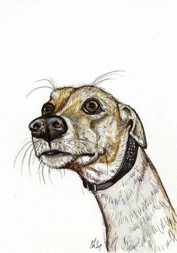 Le Greyhound 8584242e2f2b32601680046358854445