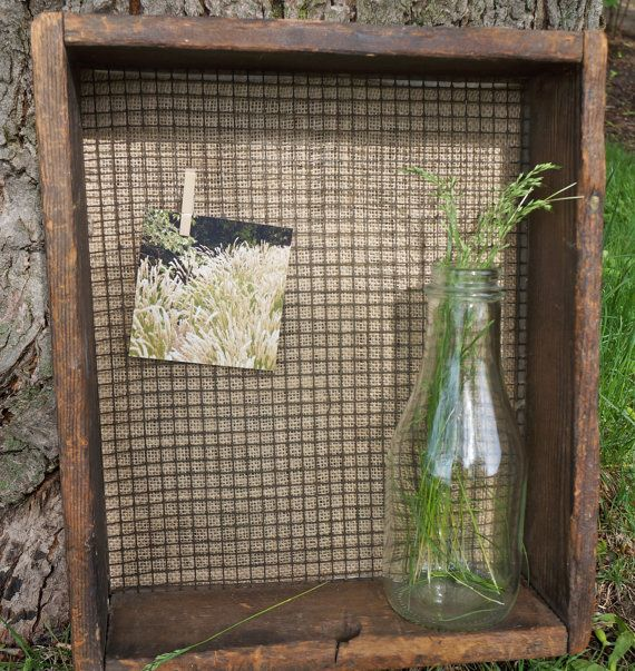 Shadow Box with Chicken Wire