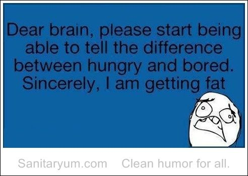 Sanitaryum | Clean Funny Pics  Clean Humor...I am guilty of eating when bored and am getting fat!..ugh!