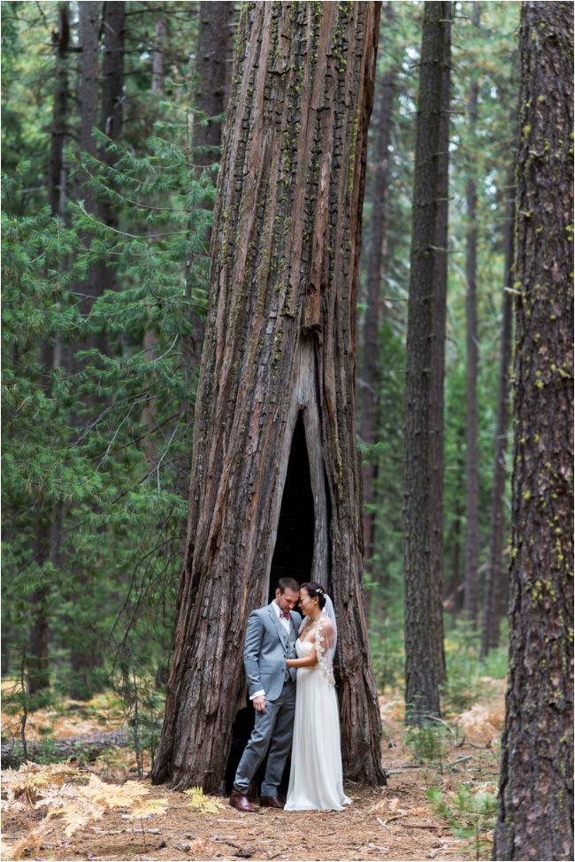 Yosemite Wedding Wedding Ideas Pinterest