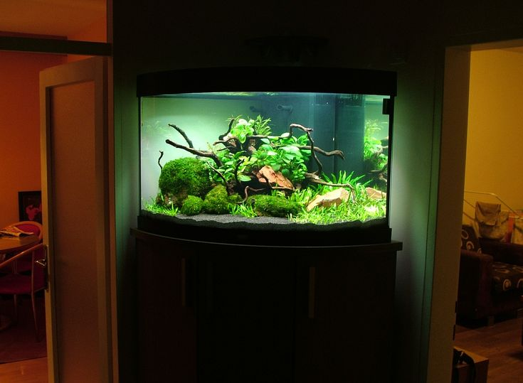Juwel aquarium pomp handleiding