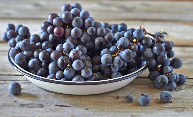 Concord Grape Sherbet   Recipe
