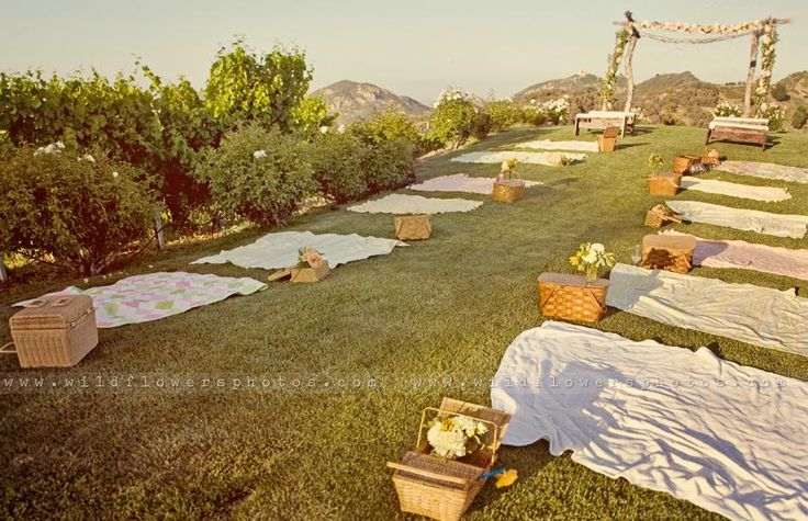 A wedding picnic!