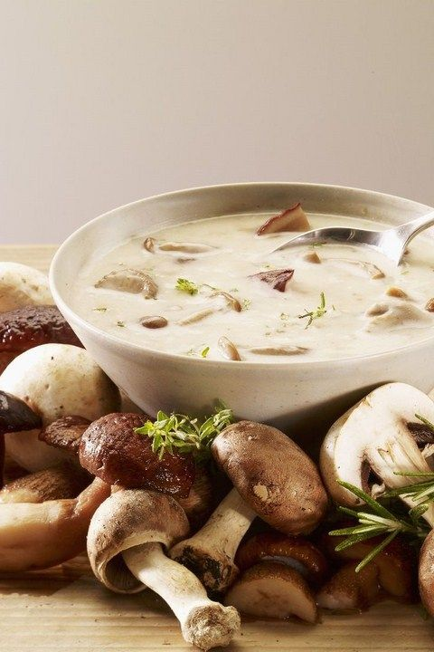 soup balthazar s cream of mushroom soup cream of wild mushroom soup ...