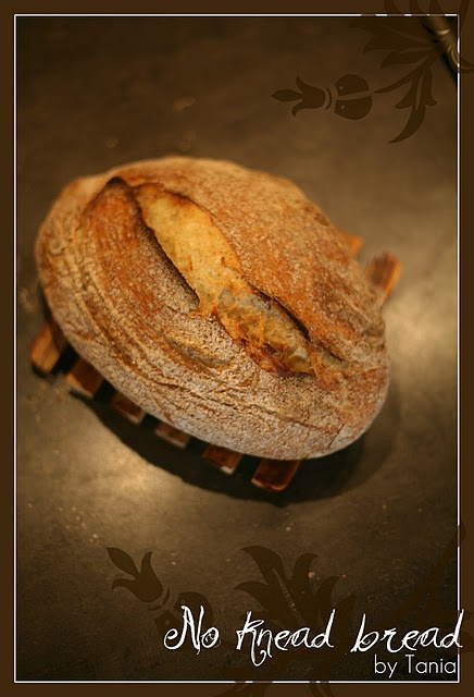 no knead bread by me ;-)   BREADS...SANDWICHES...WRAPS...PIZZA   Pint ...