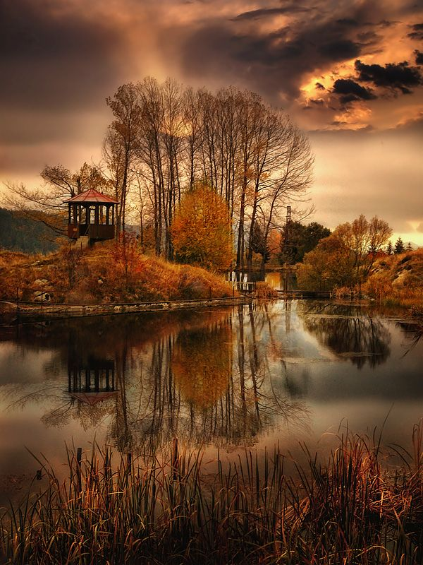 beautiful reflection of fall