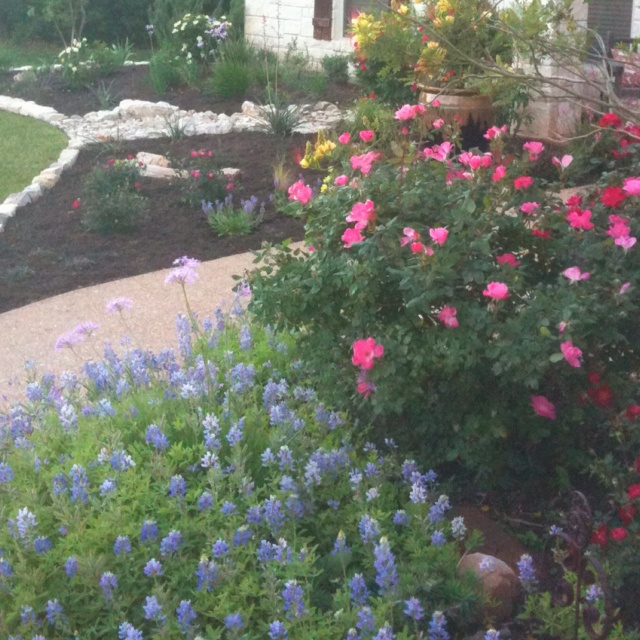 Front yard flower bed ideas photograph front yards for Front yard flower beds pictures