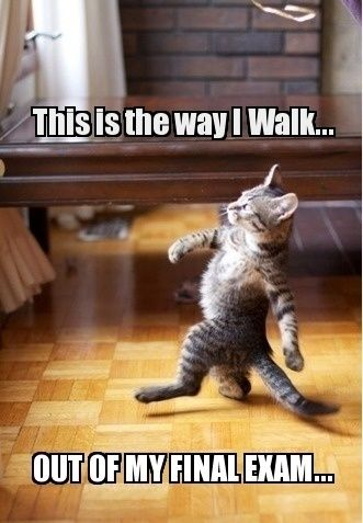 this is the way I walk out of my final exam