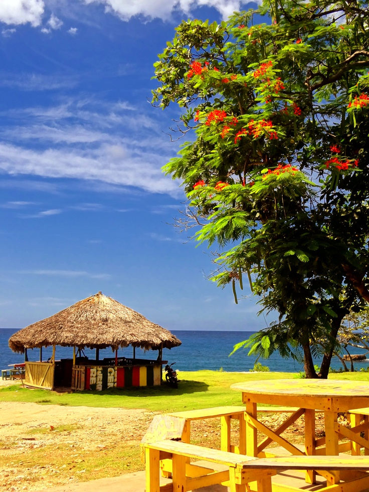 3 dives jamaica negril