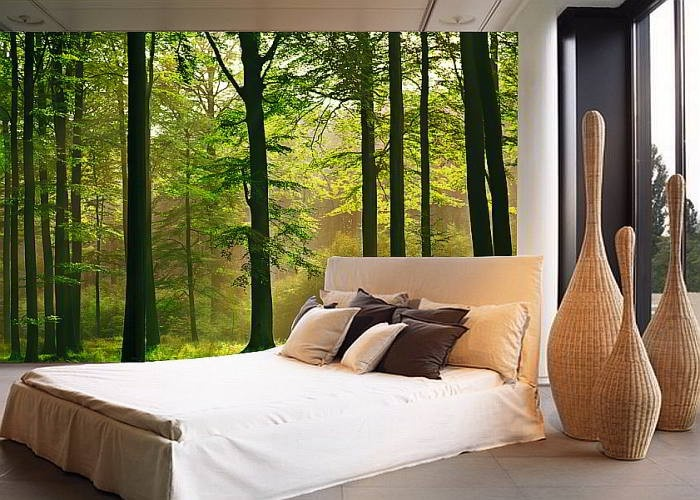 Wg216 wall mural autumn forest my country home pinterest for Birkenrinde wall mural