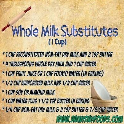 whole milk substitution