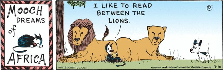 mooch read between the lions