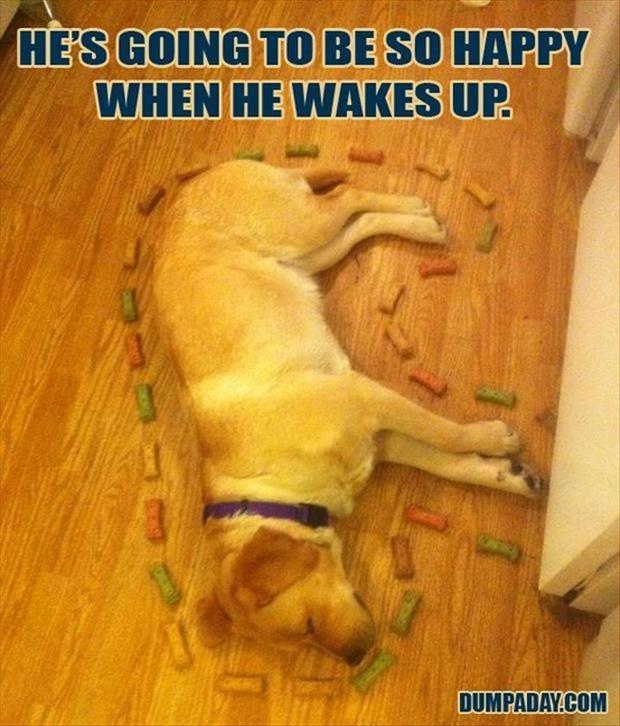 Θα είναι τόσο χαρούμενος, όταν ξυπνήσει...