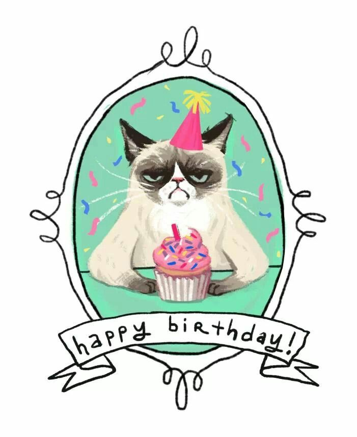 Grumpy Cat Birthday from Jimi - 2014