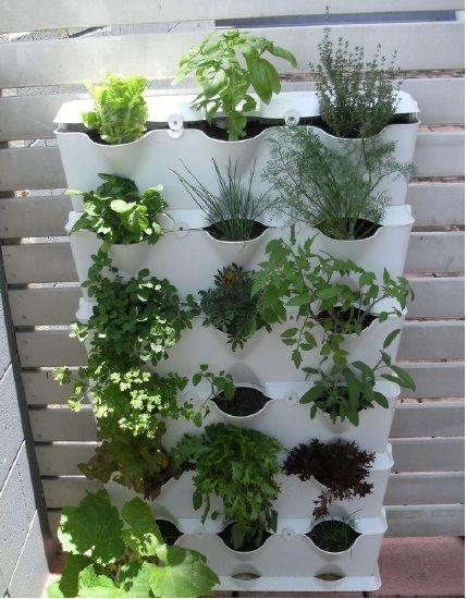 Vertical Herb Garden Garden Design Fruit Veg Herbs