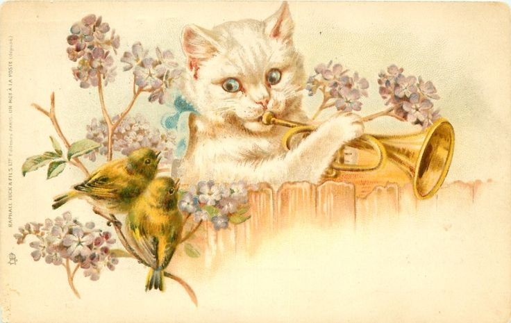 cat behind fence plays trumpet, two yellow finches observe, lilac blossom