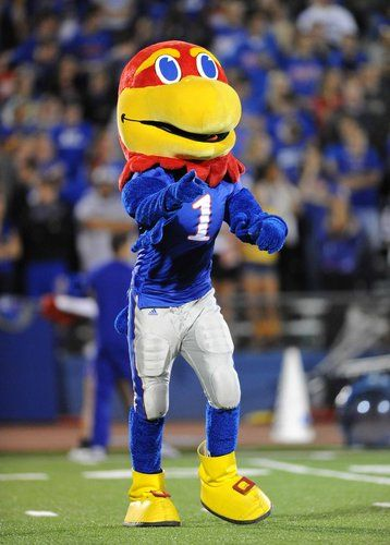 The mascot of the Kansas Jayhawks performs against the
