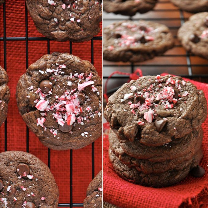 Double Chocolate peppermint Cookies--I make them bite-size with only ...
