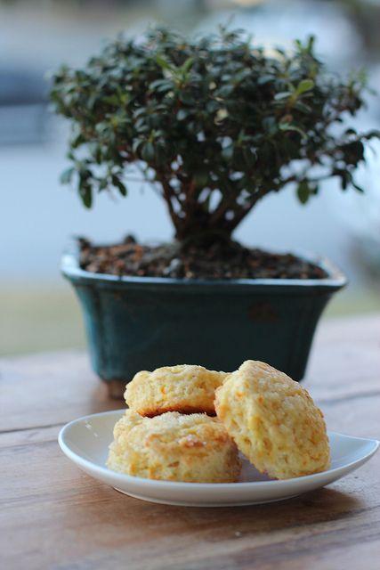 Orange & Ginger Scone - Mark Bittman recipe by Food Librarian