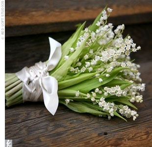 Lily of the Valley is small, petite and wonderfully fragrant! This is a cute idea for a simple bridal bouquet - which would smell heavenly!