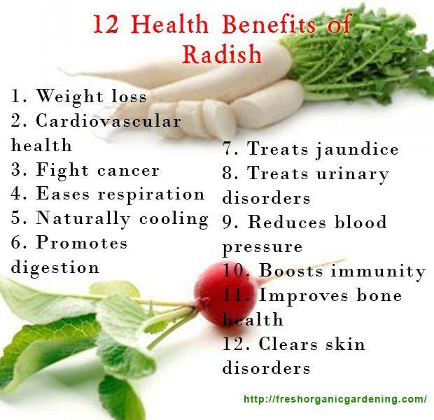 Radish Benefits Health Pinterest