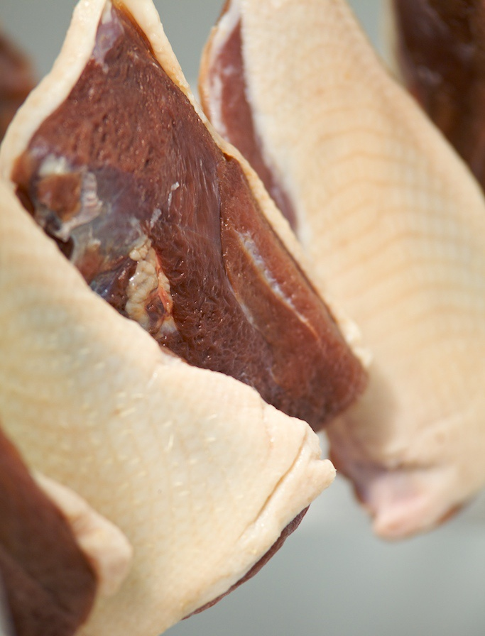 Duck prosciutto | Turkey and Other Fowl | Pinterest