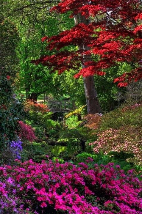 Japanese garden Beautiful Gardens Pinterest