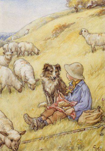 Μαζί και στα πρόβατα...