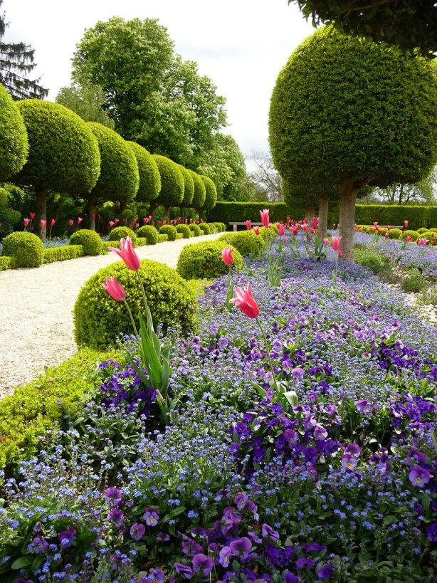 Formal topiary designs pinterest for Topiary garden designs