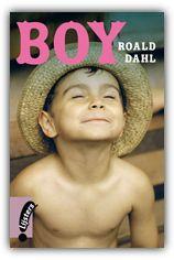 essay on boy by roald dahl