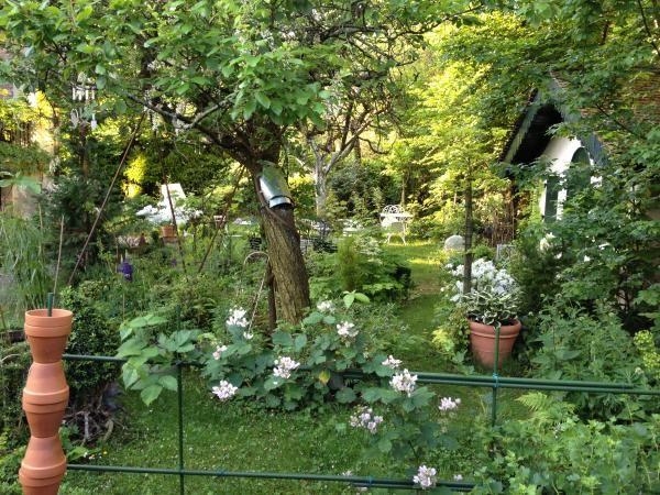 Jardin sauvage jardin et terrasse pinterest for Jardin sauvage