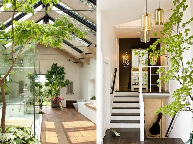 indoor gardens. Black Bedroom Furniture Sets. Home Design Ideas