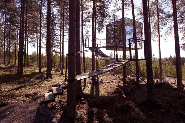 The Treehouse Hotel, northern Sweden's new concept hotel, is a collection of six individual rooms - or tree houses - located among the branches of the Harads forest.