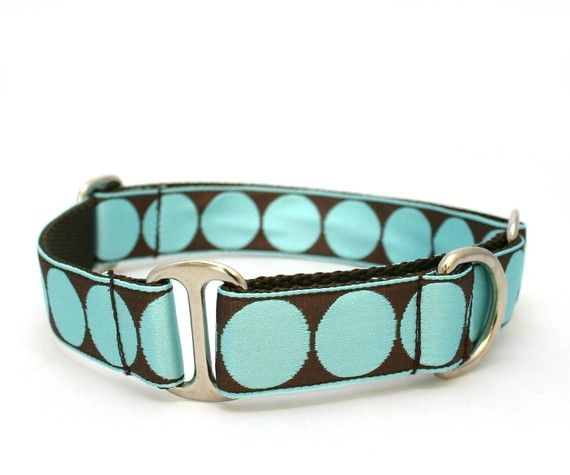 Martingale collar from The Mod Dog. I have this one already - Handmade and great quality! Lots of prints available.
