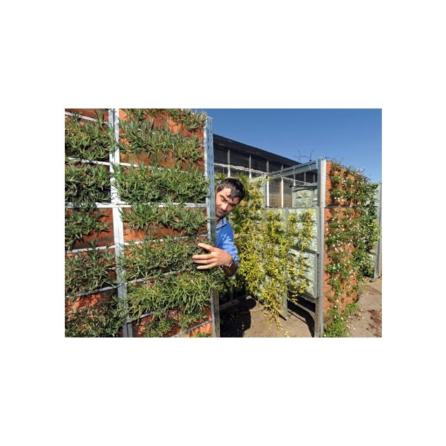 vegetable gardening ideas | Gardening ideas | Pinterest